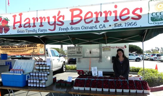 Molly Gean with Harry's Berries