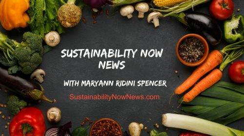 Social, Cultural, Economic, & Environmental News
