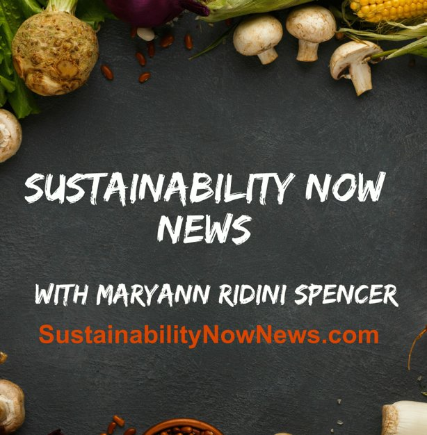 Maryann Ridini Spencer – Maryann Ridini Spencer — Award-winning ...