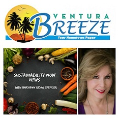 Read Maryann's Sustainability Now News Column